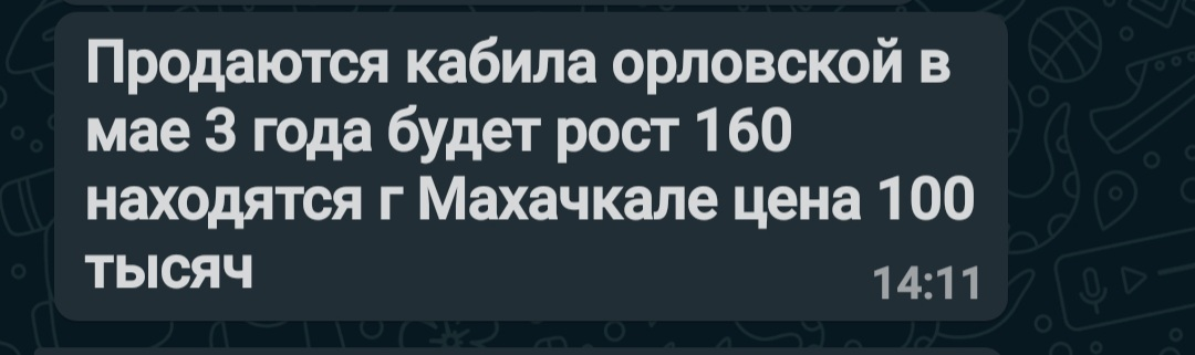 20210320_155046.jpg