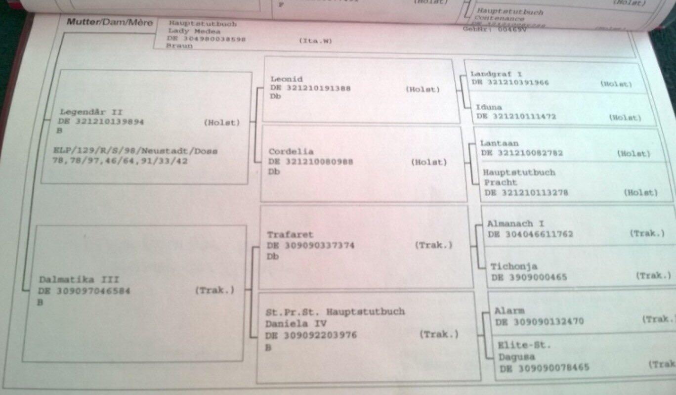 60A1DE08-C278-47EB-BB1D-DEE3A5C3863B.jpeg