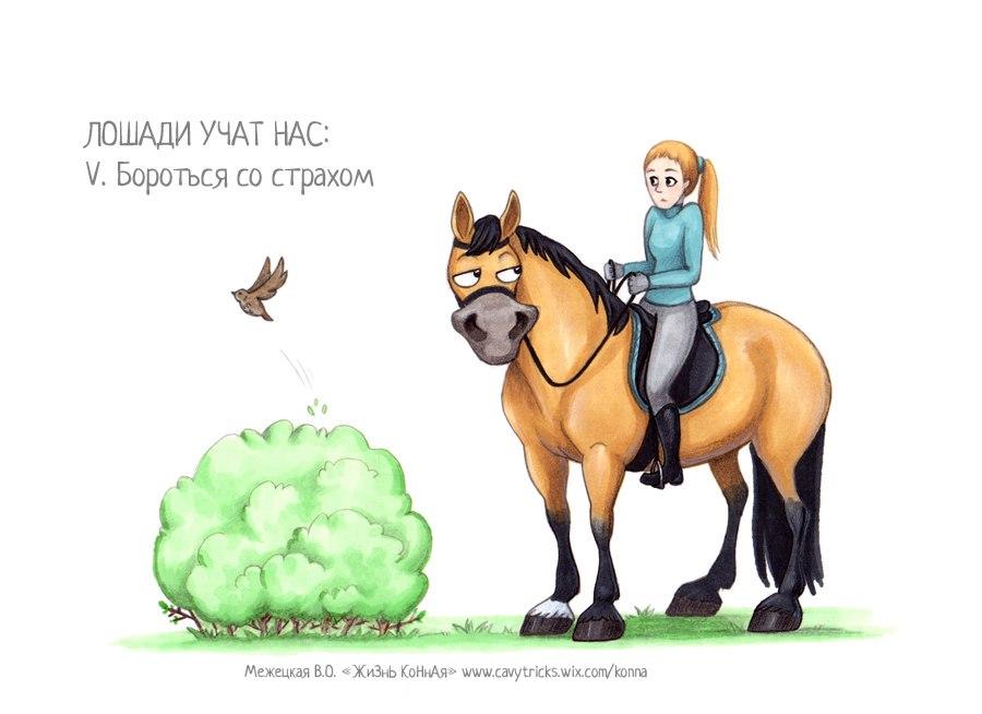Поздравление коннику в стихах 60