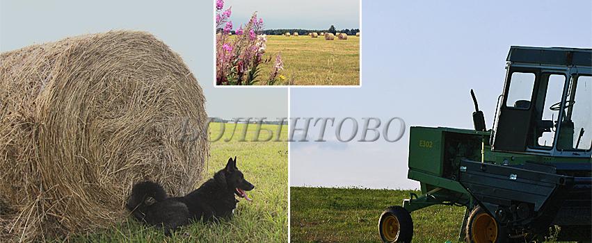 bolyntovo-fb15.08.jpg