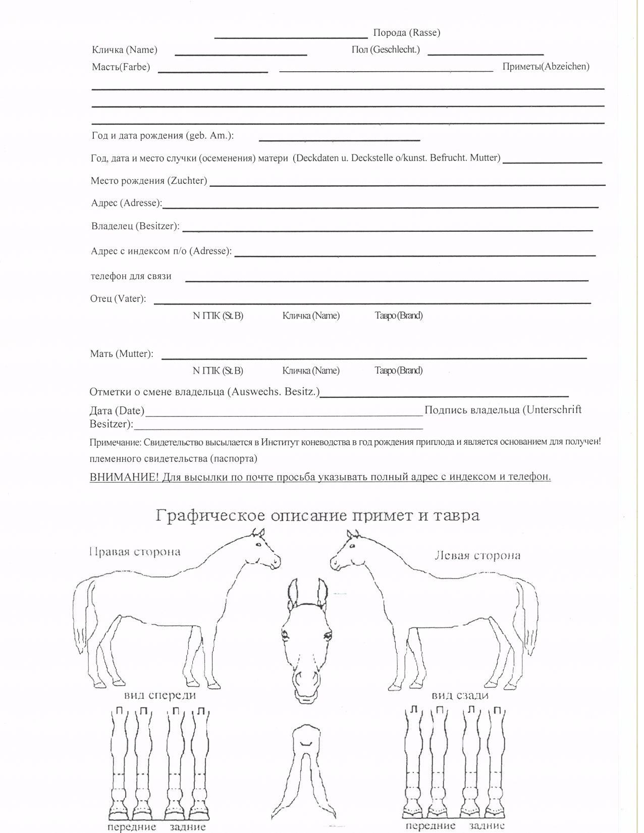 Как сделать паспорта на лошадей 128