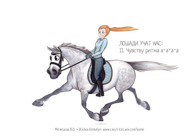 Поздравление с днем рождения тренеру конного спорта