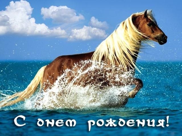 Картинки с лошадьми поздравления с днем рождения