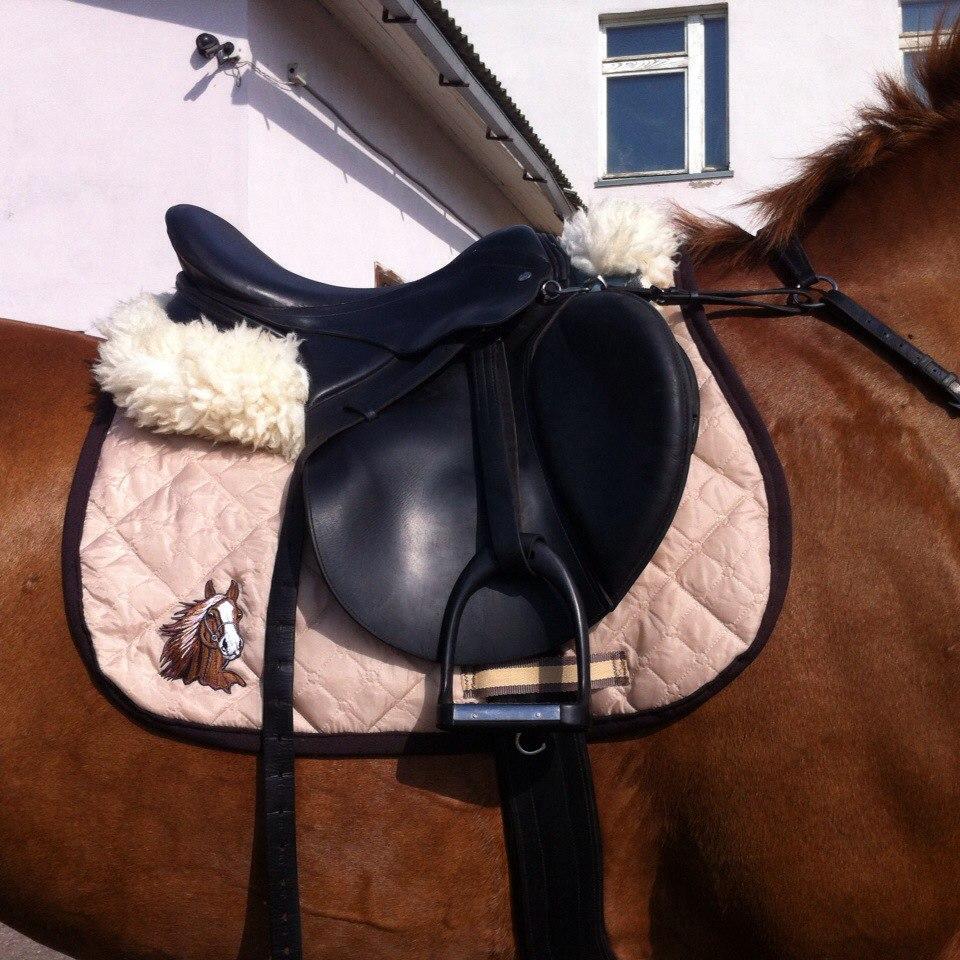 Выкройки вальтрапов для лошадей фото 5