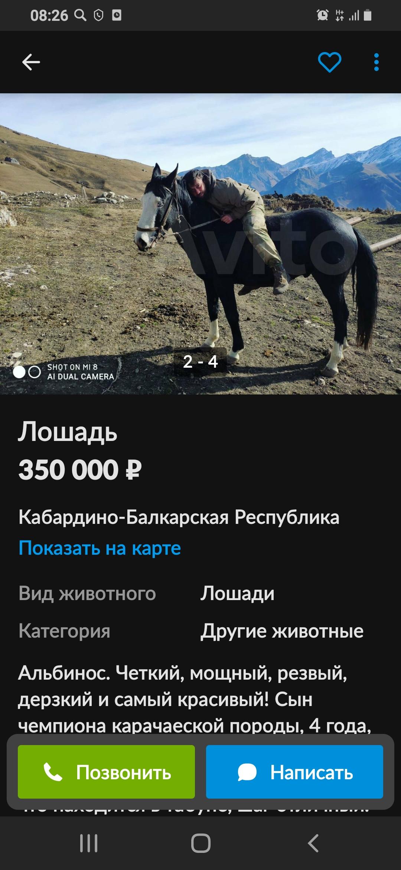 Screenshot_20210319-082640.jpg
