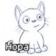 Hopa (horse_97)