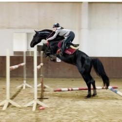 работа в конных клубах москва