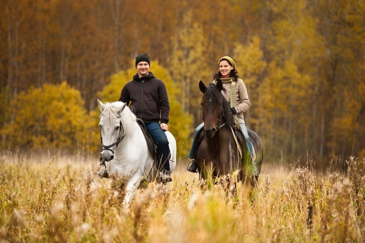 Прогулка на лошадях в спб в подарок