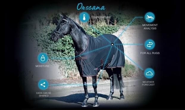 equine health revi due - 622×371