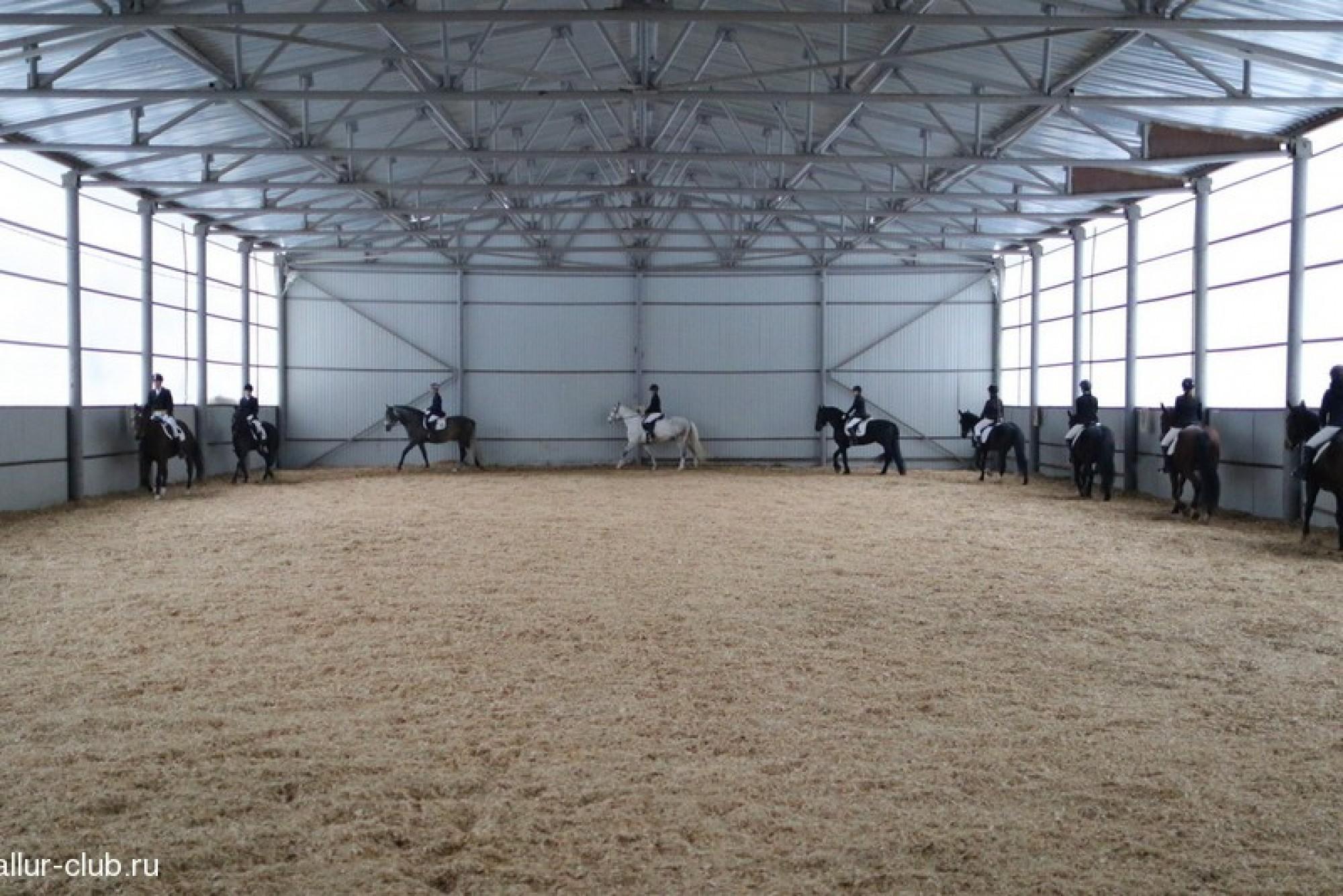 Prokoni.ru - самый популярный портал о конном спорте ...: http://www.prokoni.ru/news/155/tragediya_v_ksk__allyur__v_berdske.html