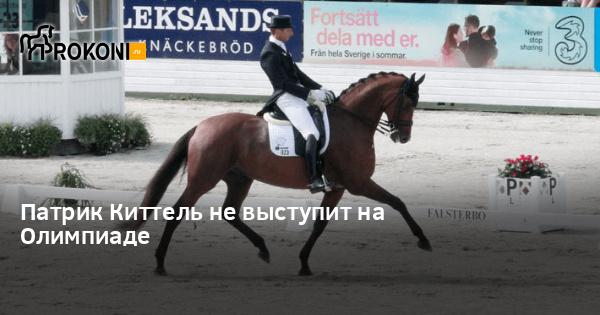 www.prokoni.ru